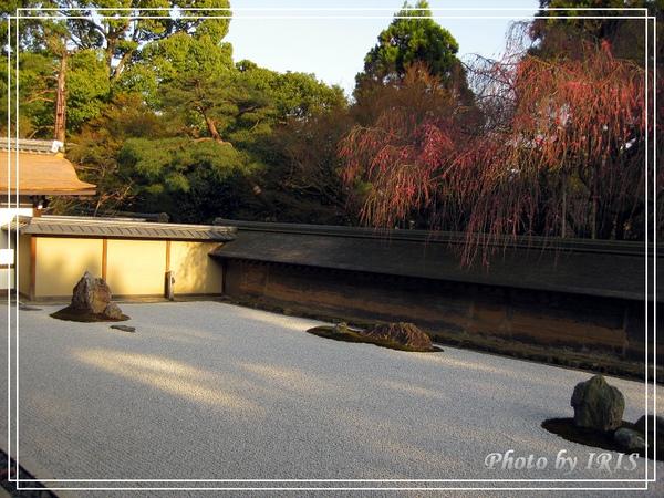 京都文化遺產2010_0403_155152.jpg