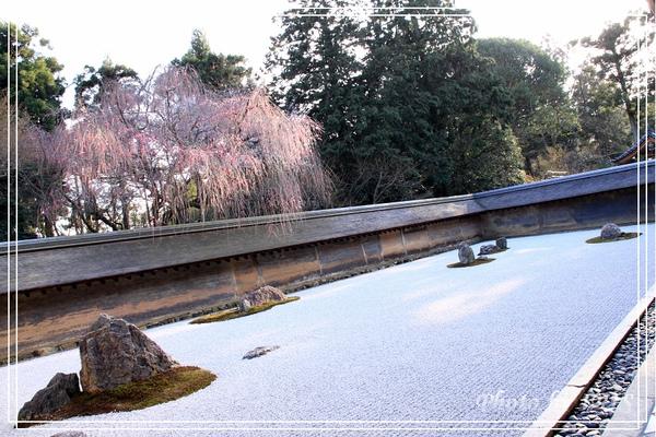 京都文化遺產2010_0403_155319.jpg