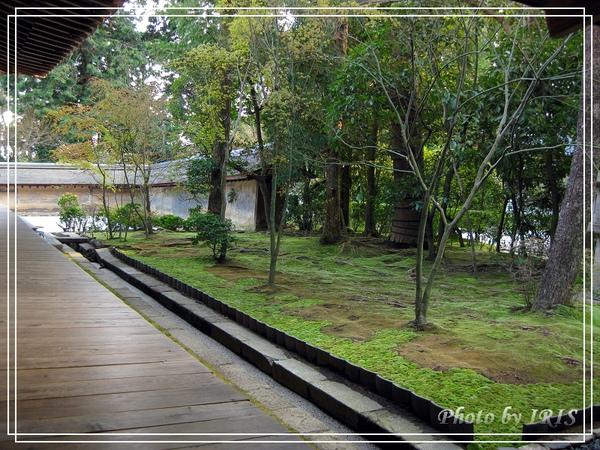 京都文化遺產2010_0403_155402.jpg