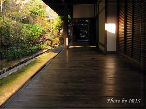 京都文化遺產2010_0403_155449.jpg