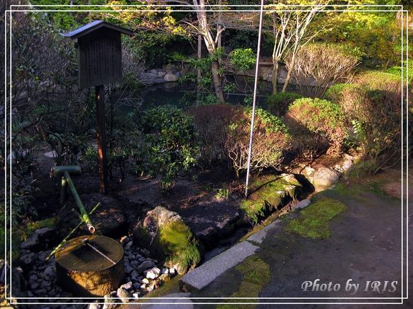 京都文化遺產2010_0403_155849.jpg