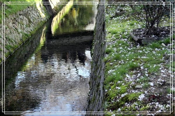 京都單車2010_0404_153612.jpg