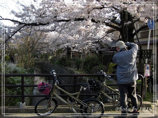 京都單車2010_0404_154636.jpg