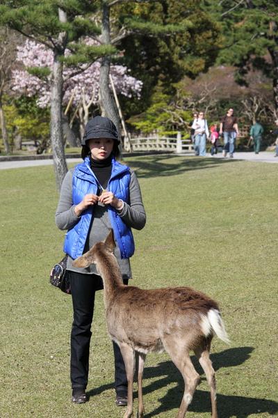 京都0407269.JPG