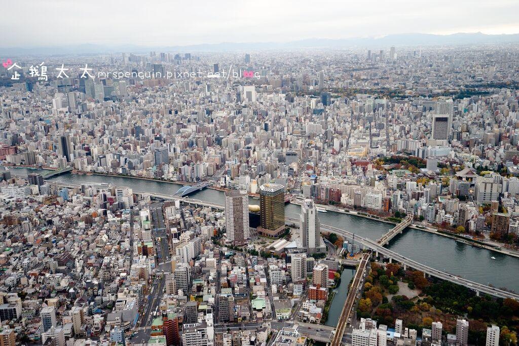 20161123-東京559.jpg