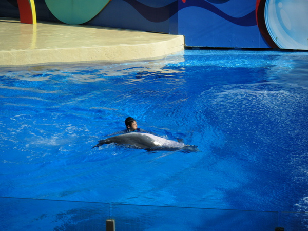 2009_0907oceanpark0105.JPG