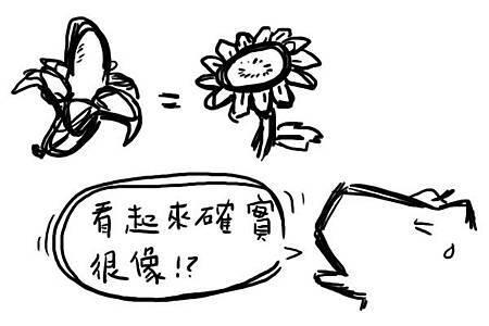 香蕉&太陽花1
