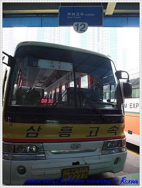 DSCF7549.jpg