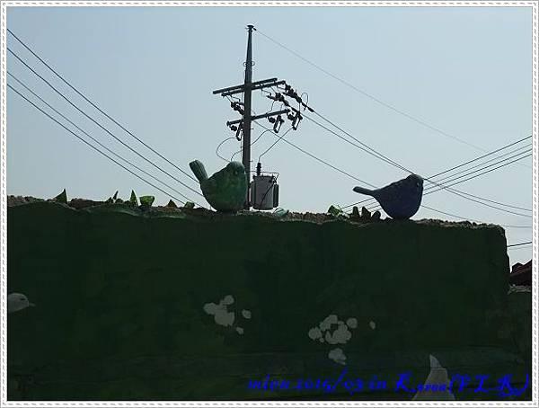 DSCF5463.jpg
