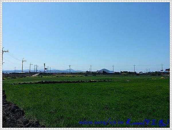 20150324_134901.jpg