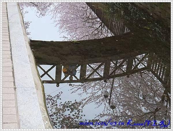 DSCF1473.jpg