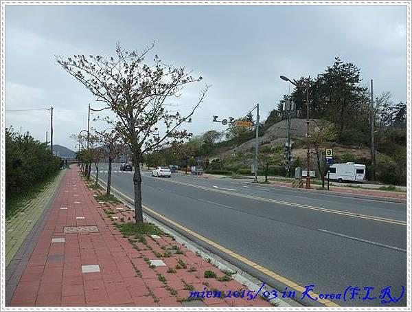 DSCF0546.jpg