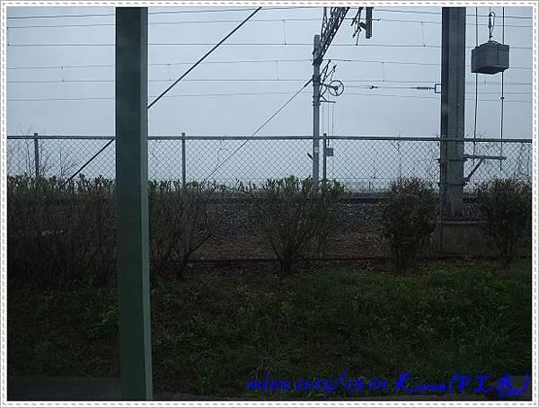 DSCF0939.jpg