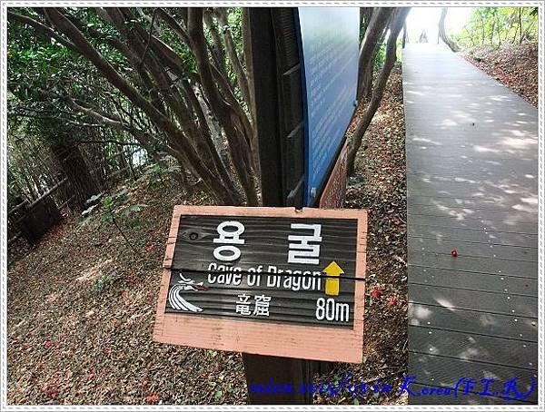 DSCF4641.jpg