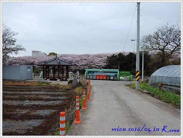 DSCN1301.jpg