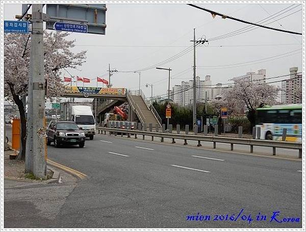 DSCN1391.jpg
