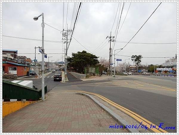 DSCN1399.jpg
