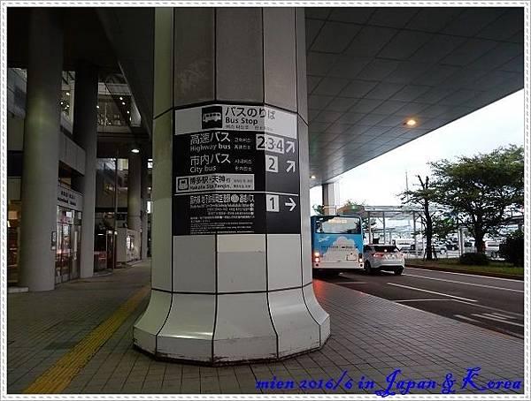 DSCN8338.jpg