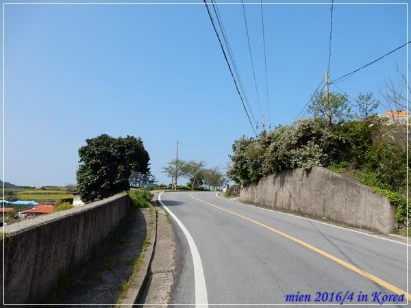 DSCN8519.JPG