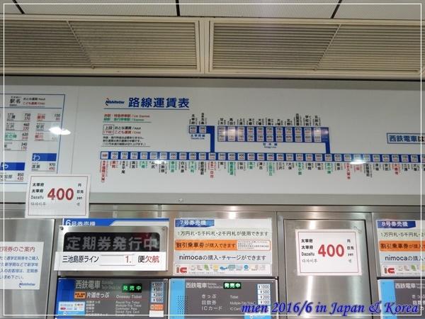 DSCN8428.JPG