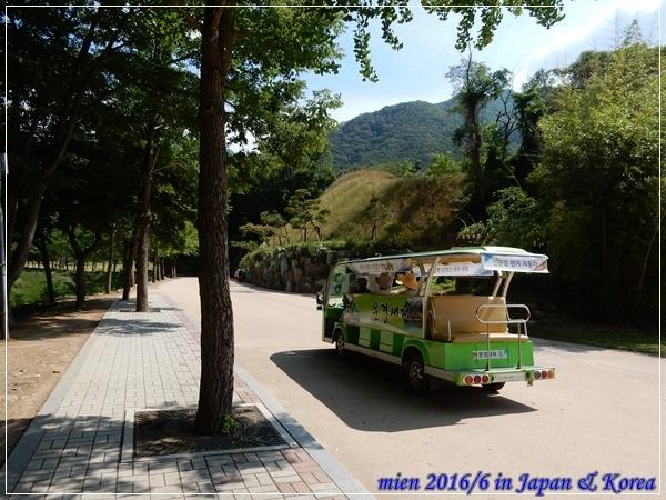 DSCN9085.JPG