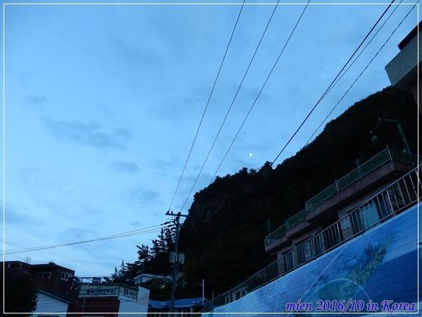 DSCN9229.JPG