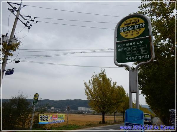DSCN3295.JPG