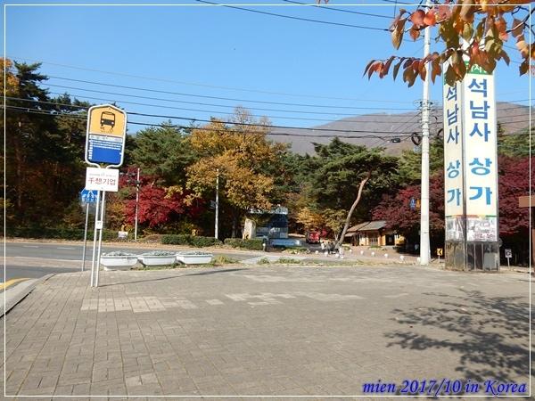 DSCN2401.JPG