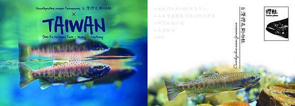6 成鮭 rev (印).jpg