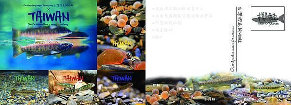 7 鮭魚生活史(全) rev (印).jpg