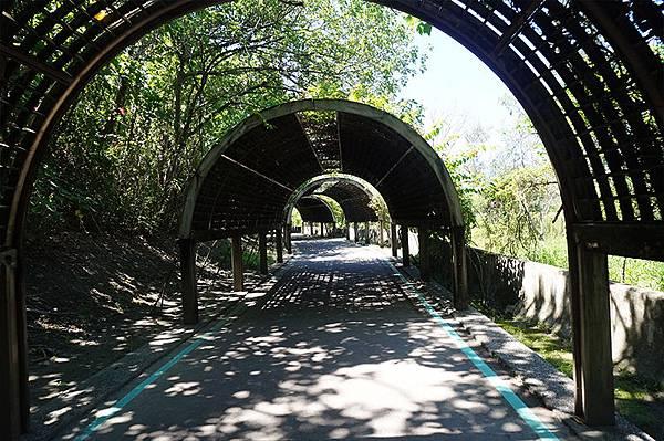 台東森林公園4.jpg