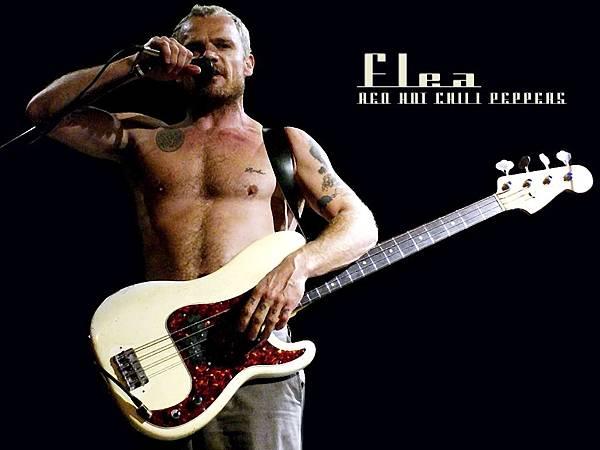Flea03