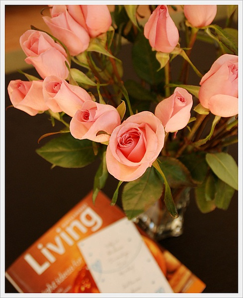 9/27/2010 birthday roses