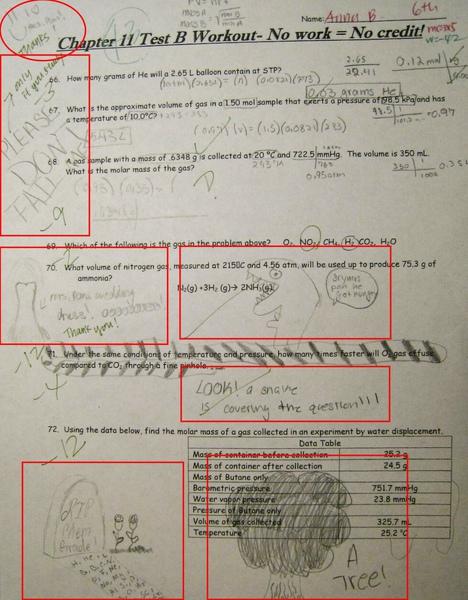 Anna's test