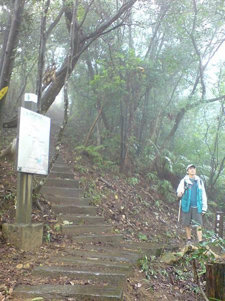 老鷲尖主峰與南峰的岔路