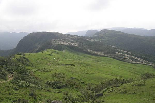 桃源谷的山上草原,如地毯一般