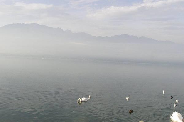 日內瓦湖(蕾夢湖)