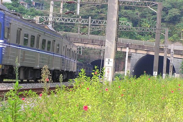 電車靠近竹仔嶺隧道