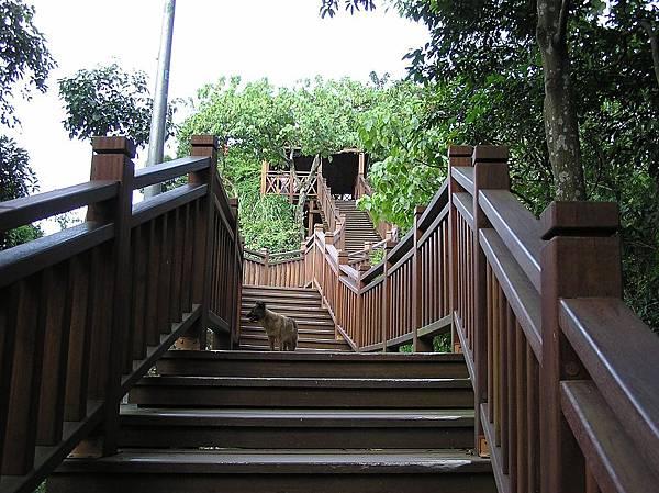 仙跡岩的木棧步道
