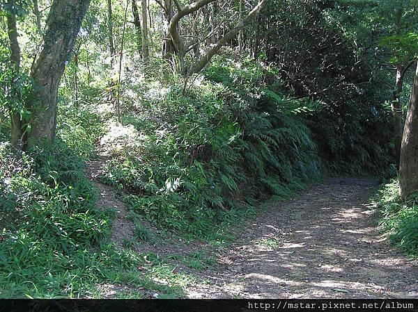 寬敞土路轉稜線山路
