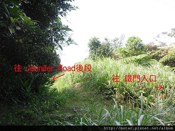 Jennifer Road 分段處