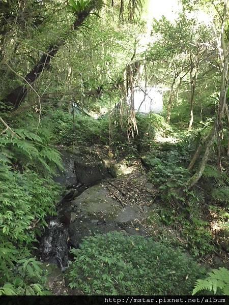 小溪上方帆布獵寮