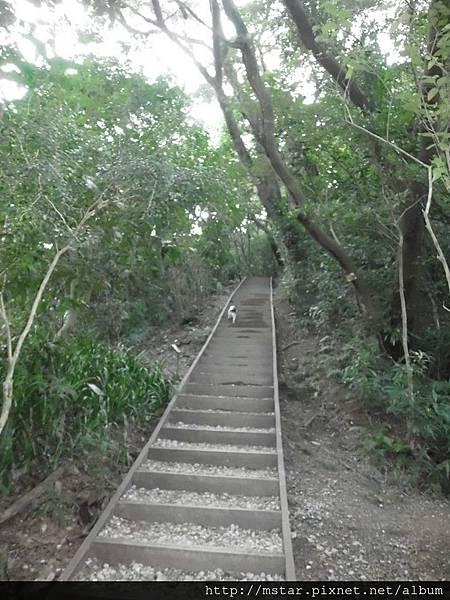 陡上碎石階梯