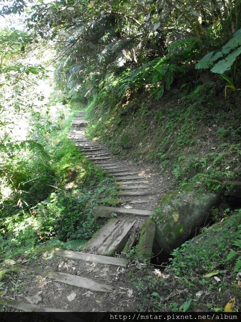 老舊枕木步道