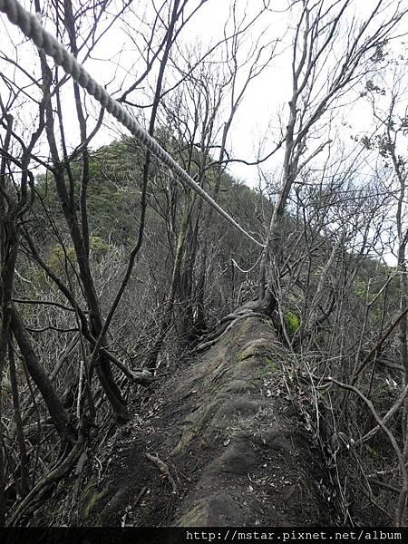 火燒過的稜線