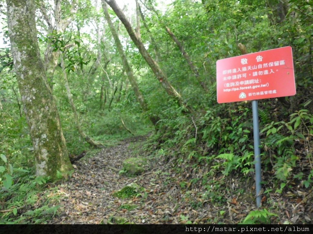 將進入插天山自然保留區
