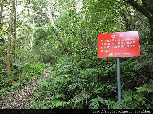 進入插天山自然保留區