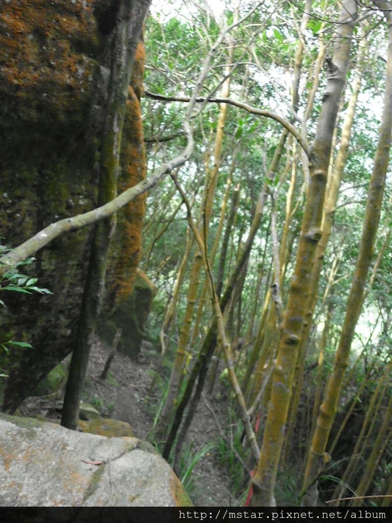 通過巨石旁