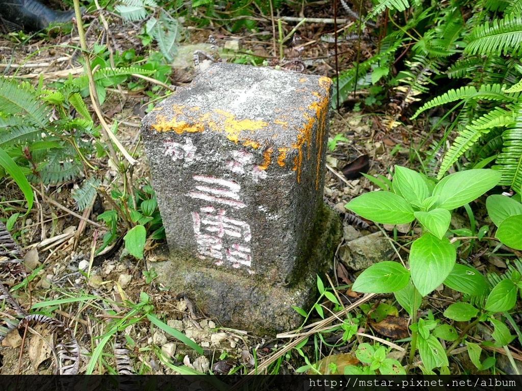 森林三角點 次張(01)