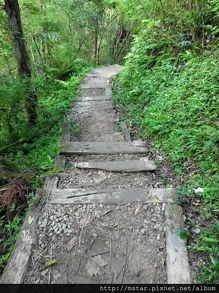 腐朽枕木階梯
